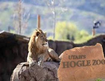 Hogle Zoo | Things to Do in Salt Lake City - Utah's Best Vacation Rentals