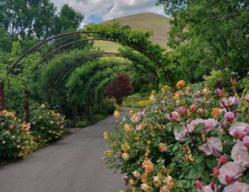 Red Butte Gardens | Things to Do in Salt Lake City - Utah's Best Vacation Rentals