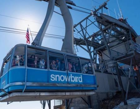 Snowbird Ski Resort    Things to Do in Salt Lake City Utah - Utah's Best Vacation Rentals