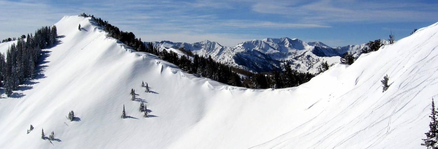 Wasatch Cache National Forest | Wasatch Front Mountains - Utah's Best Vacation Rentals