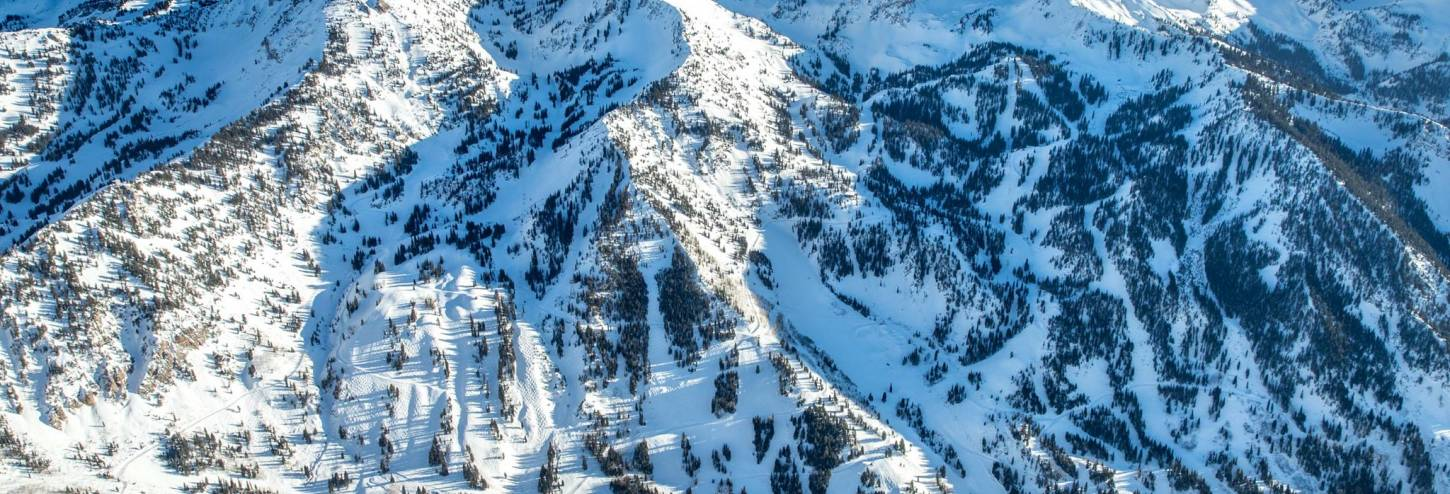 Snowbird - Alta Ski Area | Ski Lodging and Vacation Rentals - Utah's Best Vacation Rentals